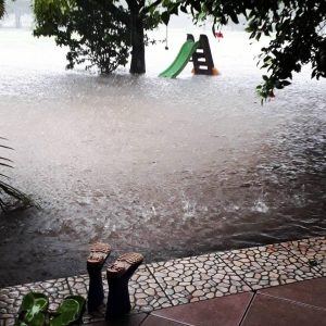 Nica Flood